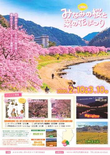 南伊豆町 みなみの桜と菜の花まつり
