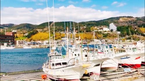 伊豆稲取漁港 海 山 空のどかな景色自然が広がります。徳造丸
