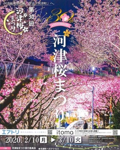 河津桜まつりイベントポスター