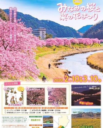 みなみの桜と菜の花まつりイベントポスター